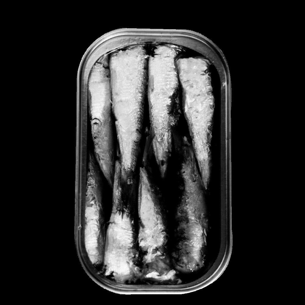 sardine-effetto-2