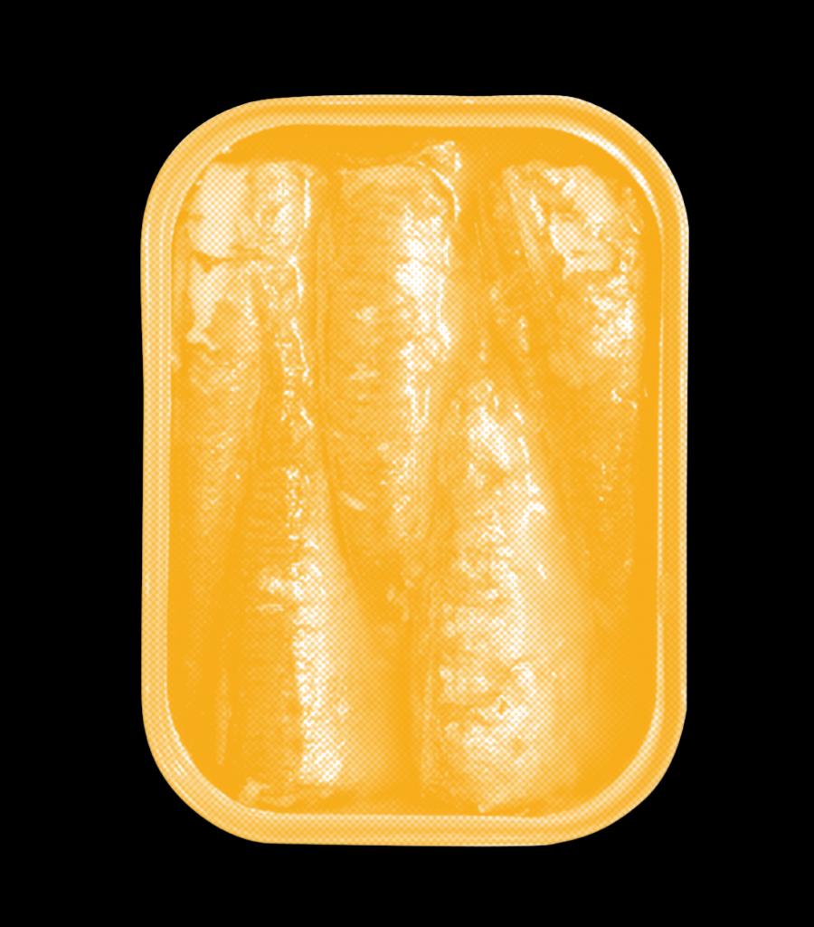 sardine-homepage2